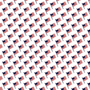 Patriotic #4 Patterned Vinyl