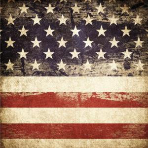 Patriotic #5 Patterned Vinyl