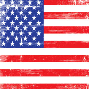 Patriotic #9 Patterned Vinyl